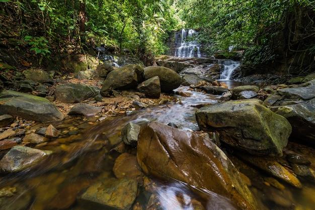 Regenwaldwasserfall kubah nationalpark malaysia borneo