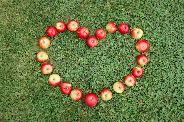 Reife äpfel auf dem gras sind in form eines herzens ausgelegt