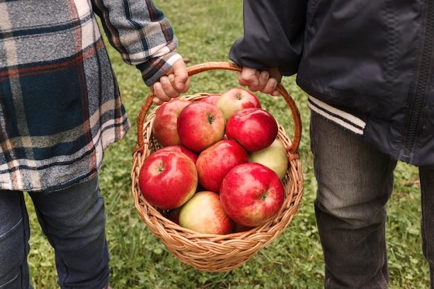 Reife äpfel im korb in kinderhänden