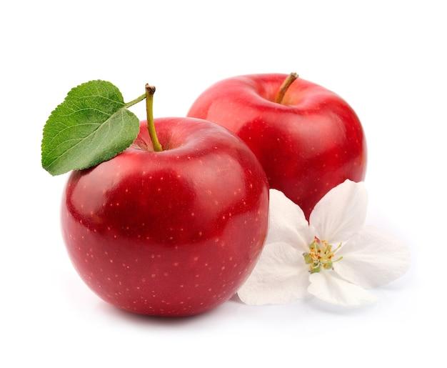 Reife apfelfrucht mit blumen schließen oben auf weiß