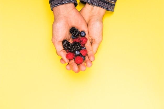 Reife appetitanregende himbeerbrombeere und -korinthe in den händen auf gelber oberfläche