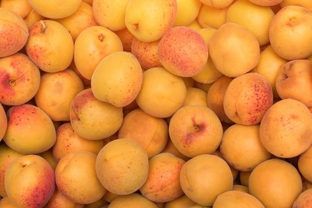Reife aprikose. nahansicht
