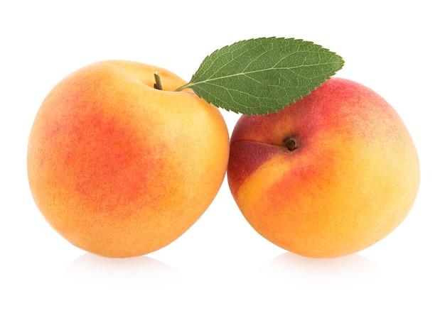 Reife aprikosen isoliert auf weißem hintergrund