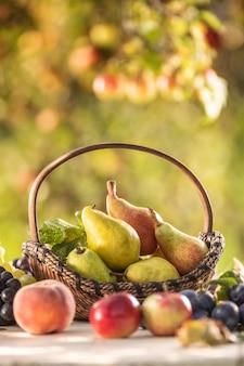 Reife birnen in einem holzkorb auf einem holzgartentisch, umgeben von anderen frischen früchten.
