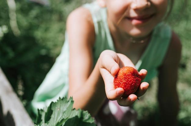 Reife erdbeere in der hand eines kindermädchens auf bio-erdbeerfarm, leute, die erdbeeren in der sommersaison pflücken