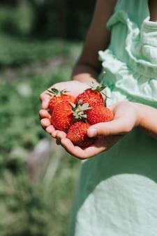 Reife erdbeeren in den händen eines kindermädchens