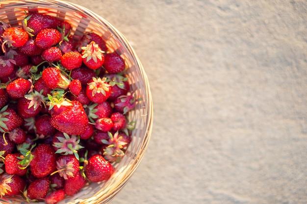 Reife erdbeeren in einem weidenkorb auf grauem hintergrund, draufsicht. platz für text