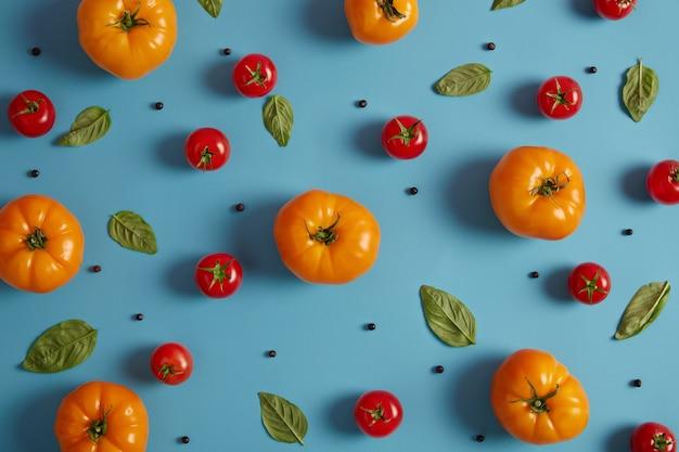 Reife frische rote und gelbe tomaten, die im gewächshaus, in den basilikumblättern und im pfefferkorn auf blauem hintergrund gewachsen sind. erbstück gemüse für die ernährung. landwirtschaft und ernte. natürliche bio-lebensmittel, vitamine