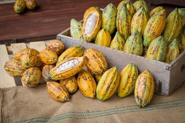 Reife kakaohülseneinrichtung auf rustikalem hölzernem hintergrund