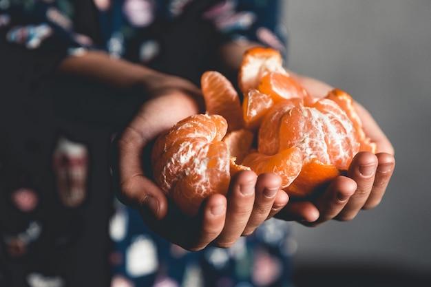 Reife mandarinen. kinder halten mandarinen mit grünen blättern, die gerade von einem baum gepflückt wurden pnov2019