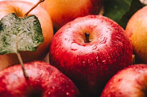 Reife nasse rote und gelbe äpfel, die in einem stapel mit grünen blättern liegen.