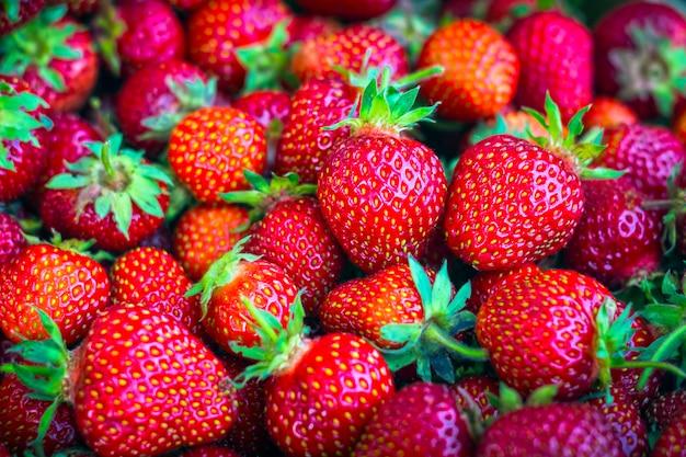 Reife, organische, rote erdbeeren in großen mengen in einer box