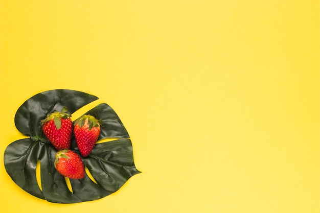 Reife rote erdbeere auf monstera-blatt
