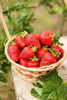 Reife saftige erdbeeren in einem korb auf einem alten holztisch im rustikalen stil im garten