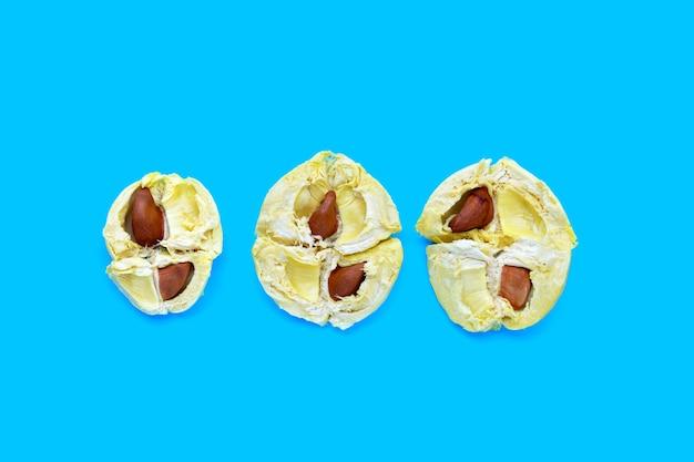 Reifer durian auf blauer oberfläche