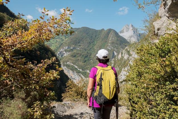 Reifer frauenwanderer in den bergen
