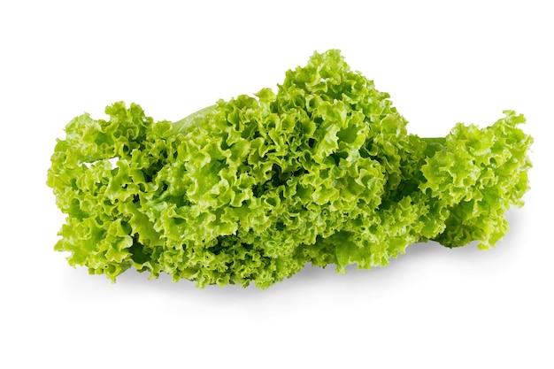 Reifer salat mit grünen blättern isoliert. nahaufnahme von frischem bio-gemüselebensmittel, diätkonzept