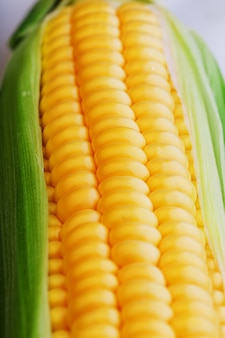 Reihen von frischen und reifen gelben maiskörnern