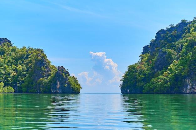 Reiner naturlandschaftsfluss zwischen mangrovenwäldern.