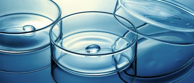 Reinigen sie die glas-petrischale mit einem flüssigkeitstropfen