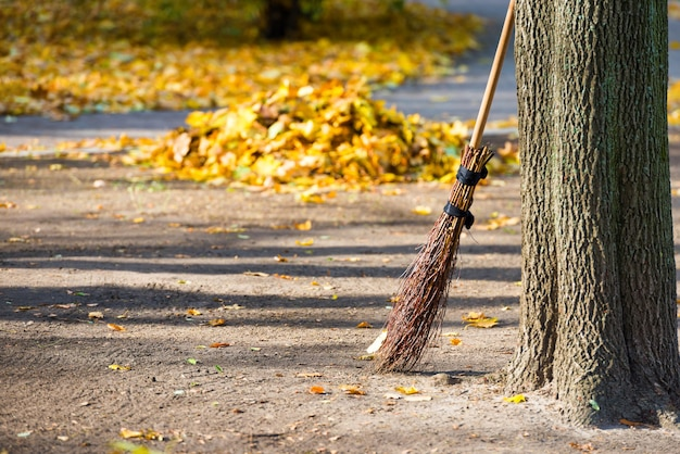 Reinigung im herbstpark - besen mit haufen gelber laub