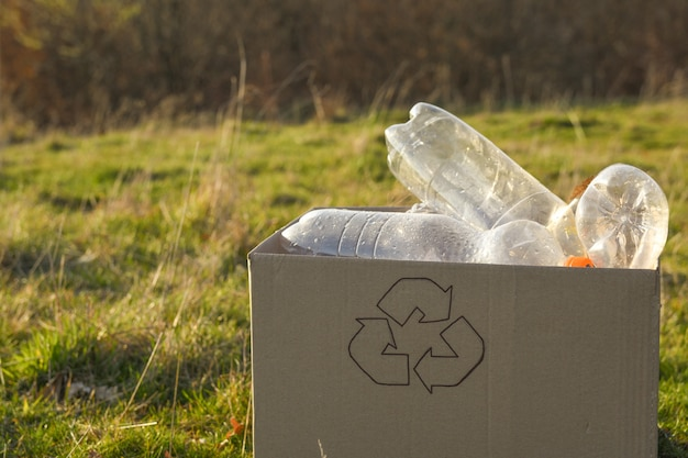 Reinigungsbereich für junge freiwillige im park, mit plastikflasche im öffentlichen park. menschen und ökologie. sammlung von plastikmüll in der natur zum recycling.
