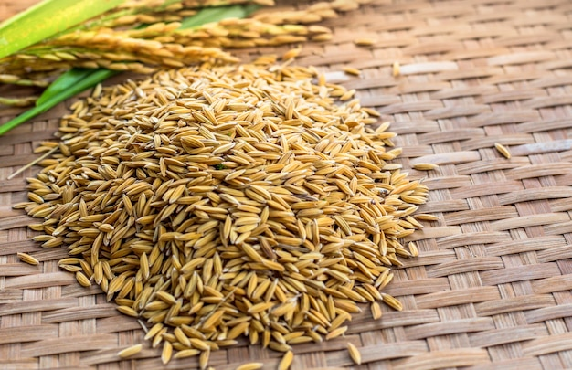 Reis auf hölzernem hintergrund