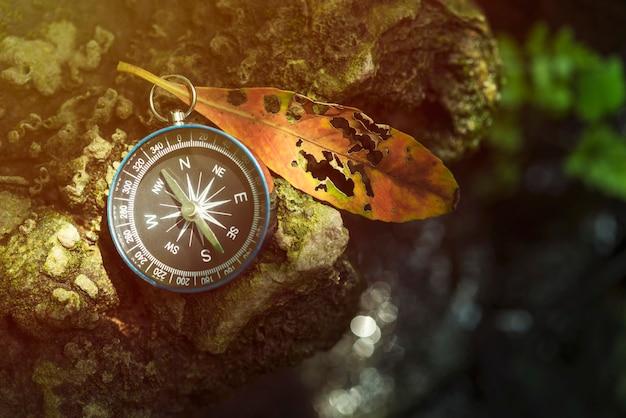 Reisehintergrund, kompass auf dem boden mit blatt in der natur mit sonnenlicht. erfolgskonzept