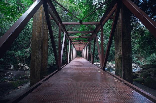 Reisekonzept des khao chamao wasserfall-nationalparks lieben natur