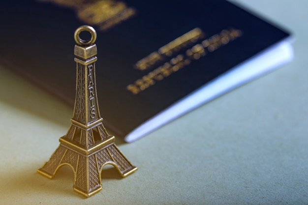 Reisekonzept, indischer pass mit papierflugzeug