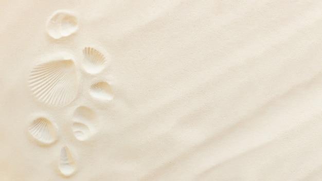 Reisen sie flach, urlaubskonzept. muscheldruck auf sand und muschelabdruck. reisen in warme länder, urlaubsreise. kopieren sie platz für unterschiedlichen reisetext. banner mit sommersandwellen und sonne