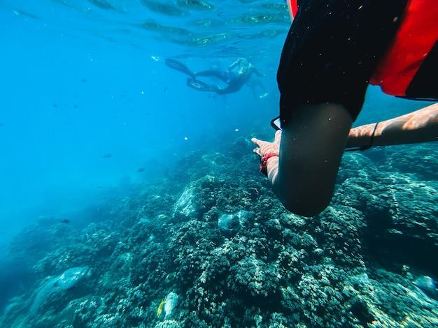Reisen sie im tauchmeer klares blaues meer