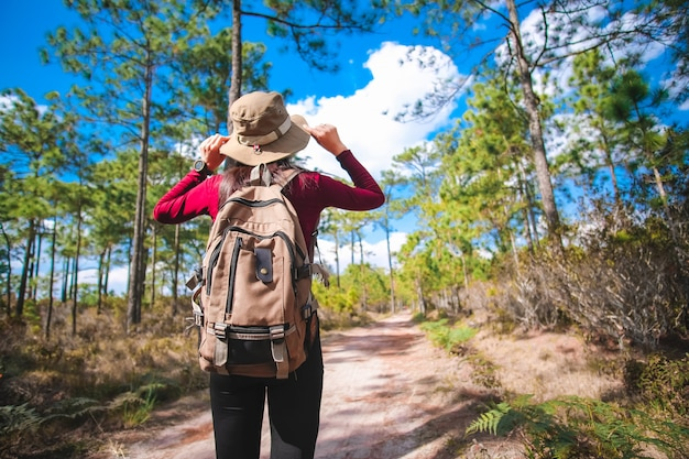 Reisende frau, die im wald spaziert und für schönen blick auf die natur im urlaub genießt. abenteuerkonzept.