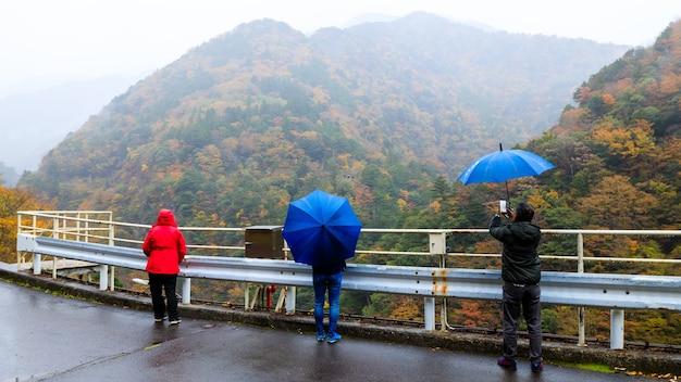 Reisende touristen, die einen blauen regenschirm halten und mit dem smartphone fotografieren, schauen auf die berglandschaft und den nebel im herbstlaub und die regenzeit in japan