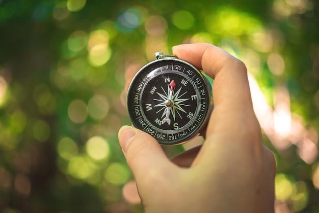 Reisender, der den kompass in der hand hält, waldhintergrundfoto