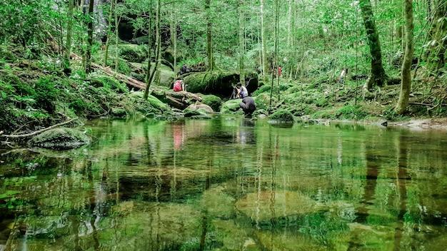 Reisender und fotograf machen das foto des wasserfalls, des klaren flusses mit grünen felsen und bäumen über der wasseroberfläche, die natur hinterlässt schatten über dem fluss im dunklen wald