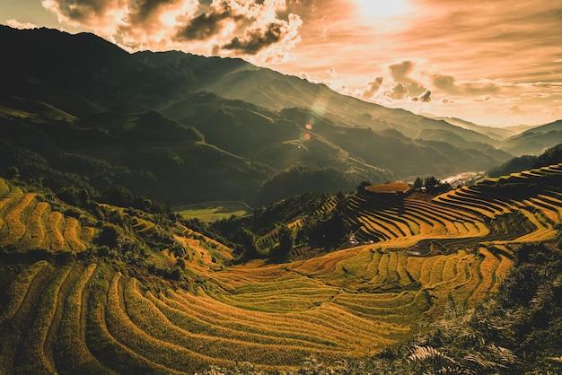 Reisfelder auf terassenförmig angelegtem hölzernem pavillon bei sonnenaufgang in mu cang chai, yenbai, vietnam.