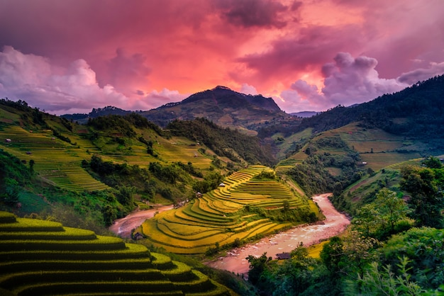 Reisfelder auf terrassiert mit hölzernem pavillon bei sonnenuntergang in mu cang chai, yenbai, vietnam.