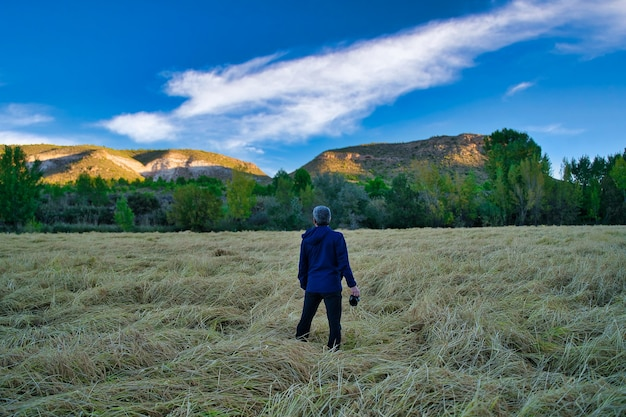 Reisfelder in calasparra murcia