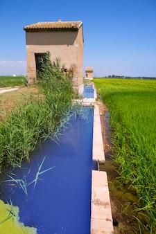 Reisfelder in valencia mit bewässerung und lager