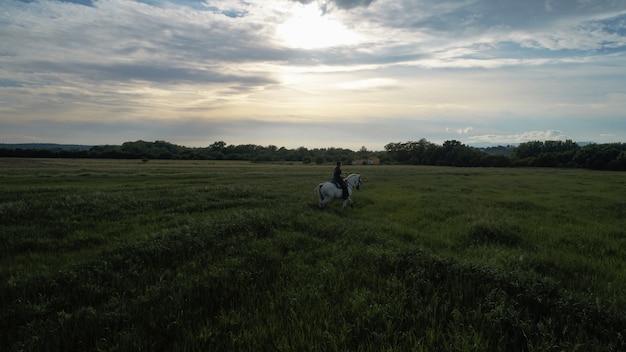 Reiter am horizont