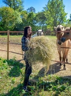 Reiter der jungen frau, der dem pferd heu gibt