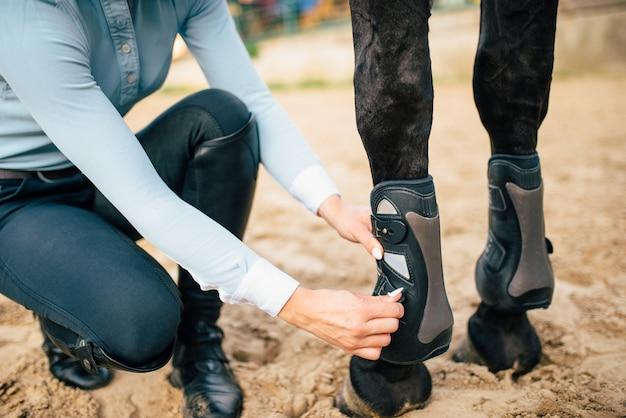 Reiterin bereitet ihr braunes pferd vor, um zu gehen. pferdesport, junge frau und schöner hengst