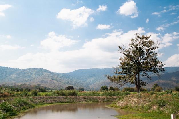 Reizende landschaft von landschaftshügeln und -tälern mit fluss am sonnigen tag