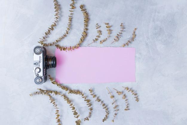 Retro kamera nahe rosa papier zwischen satz trockenen pflanzenzweigen