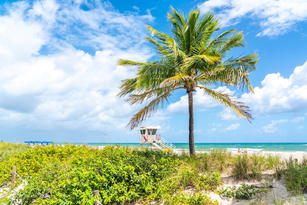 Rettungsschwimmerstation auf dem strand in fort lauderdale, florida usa