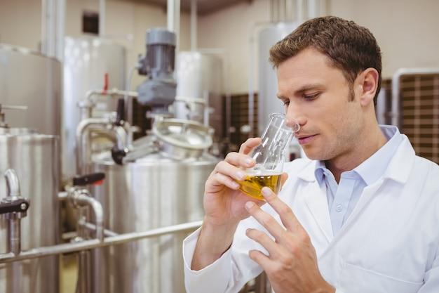 Riechender becher des fokussierten brauers mit bier