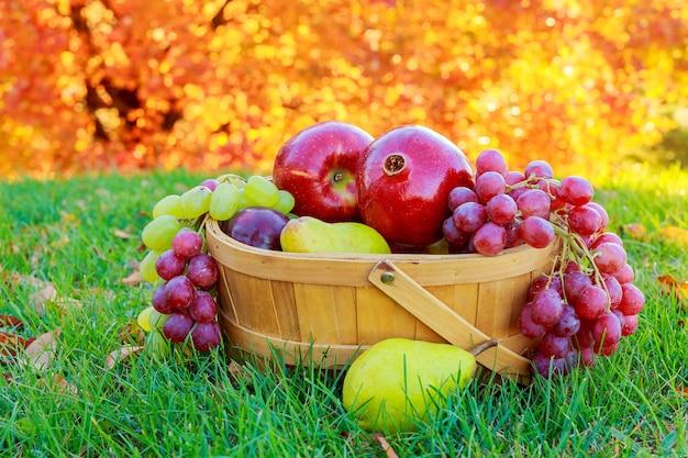 Riesige gruppe von frischem gemüse und früchten