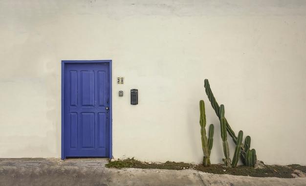 Riesige weiße wand mit einer blauen tür und einem grünen kaktus an der seite.