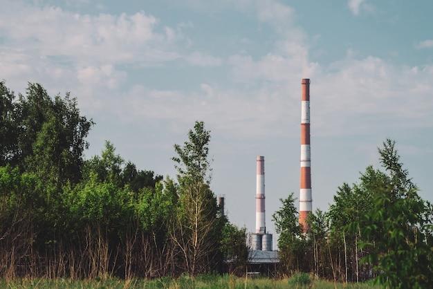 Riesiger schornstein im industriegebiet hinter bäumen.